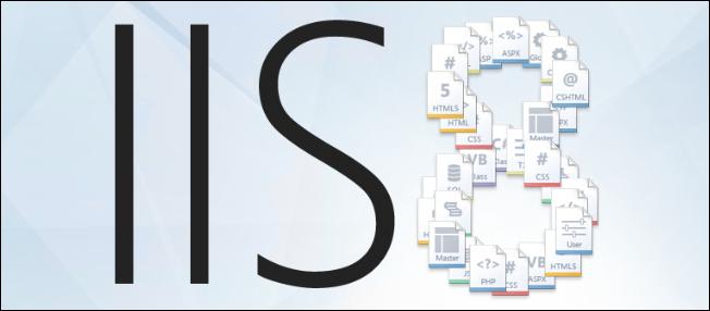 IIS de Site ve AppPool İmport/Export işlemi