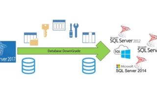 SQL Database Downgrade İşlemi