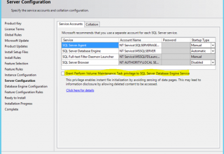 SQL Server ve Perform Volume Maintenance Task