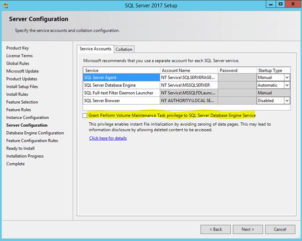 SQL Server ve Perform Volume Maintenance Task