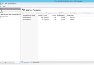 IIS Server da Process Sayısını Arttırma